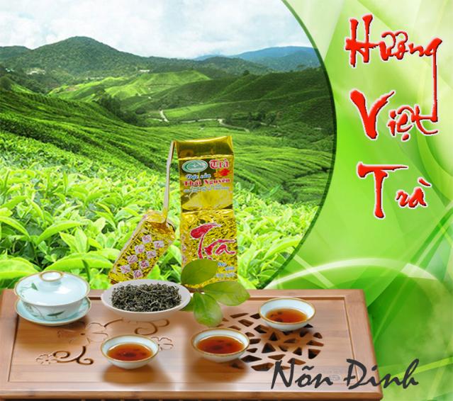Hương Việt Trà Tân Cương Nõn Đinh