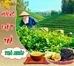 Hương Việt Trà Tân Cương Nhài Đặc Biệt